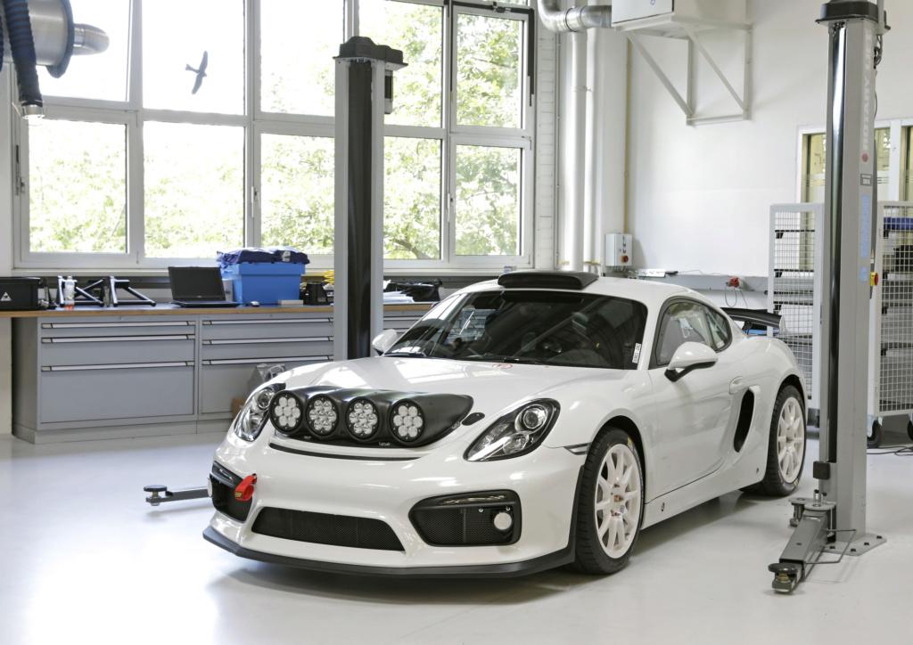 Porsche Cayman GT4 Rallye Concept Porsch27