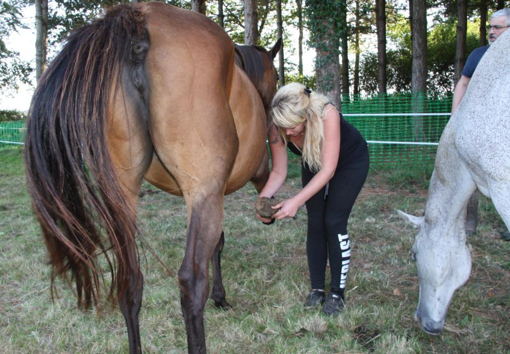 MISS, PS de 21 ans sauvée grâce à clic animaux et ses bienfaiteurs !! Img_9427