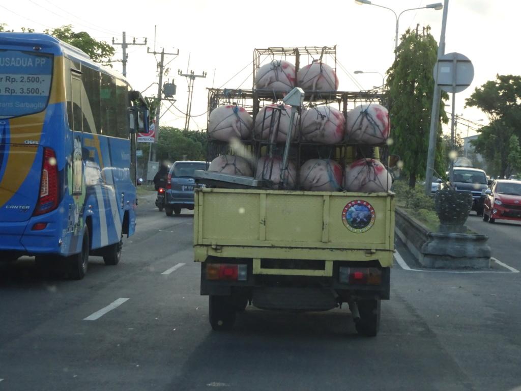 Insolite vu à Bali Dsc01010