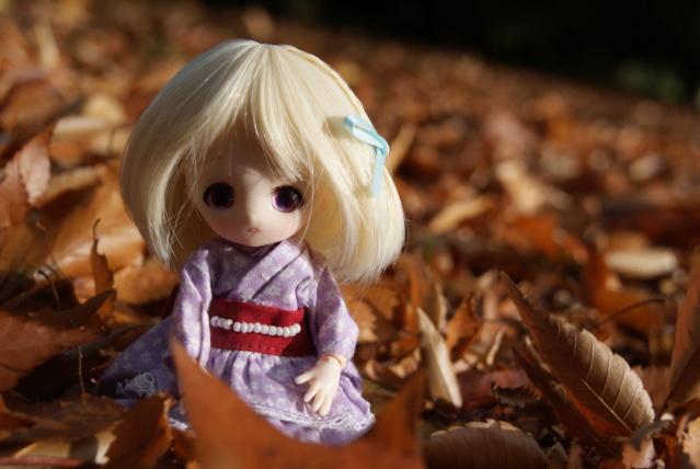 [tiny dolls] ~ Violine, Lilas & Moka ~ Dsc00710
