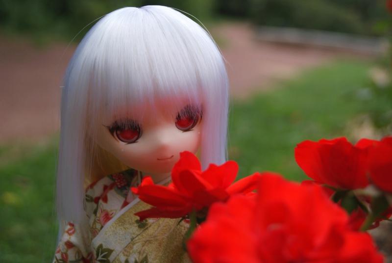 [Dollce] Molly, première sortie au parc Dsc01520