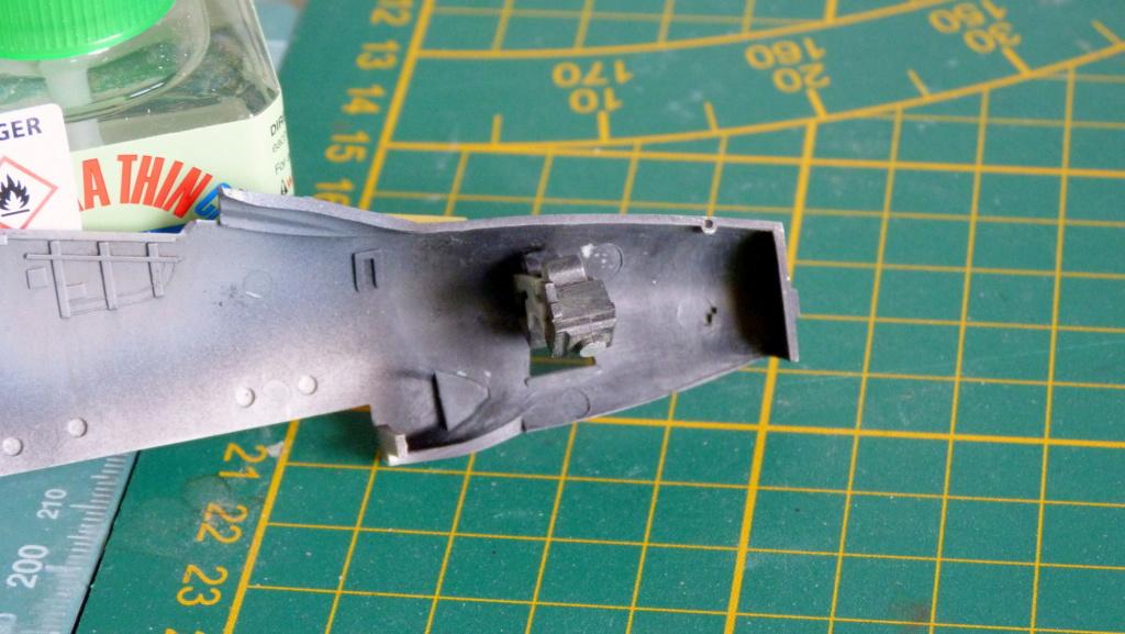 Les ailes japonaises. P1130544