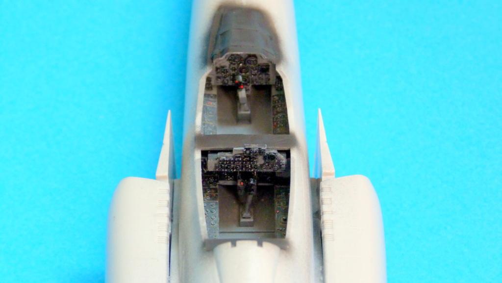 Les ailes japonaises. P1130545