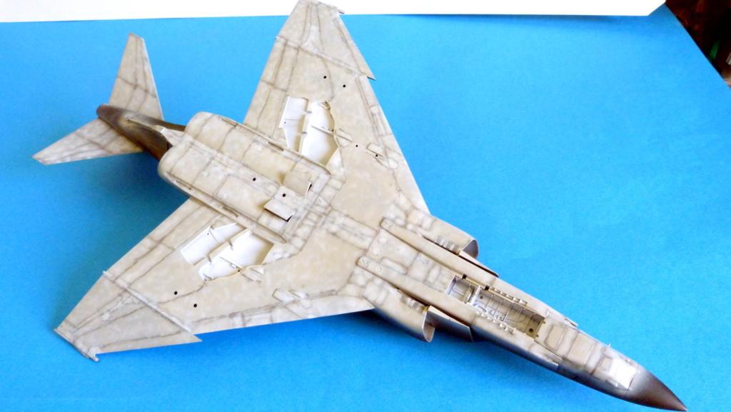 Les ailes japonaises. P1130628