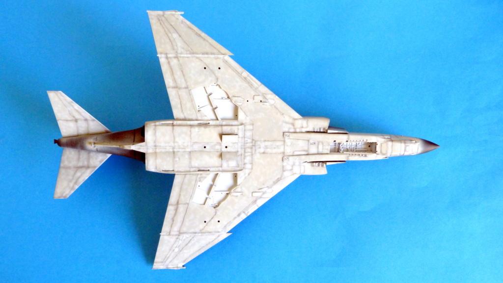 Les ailes japonaises. P1130631