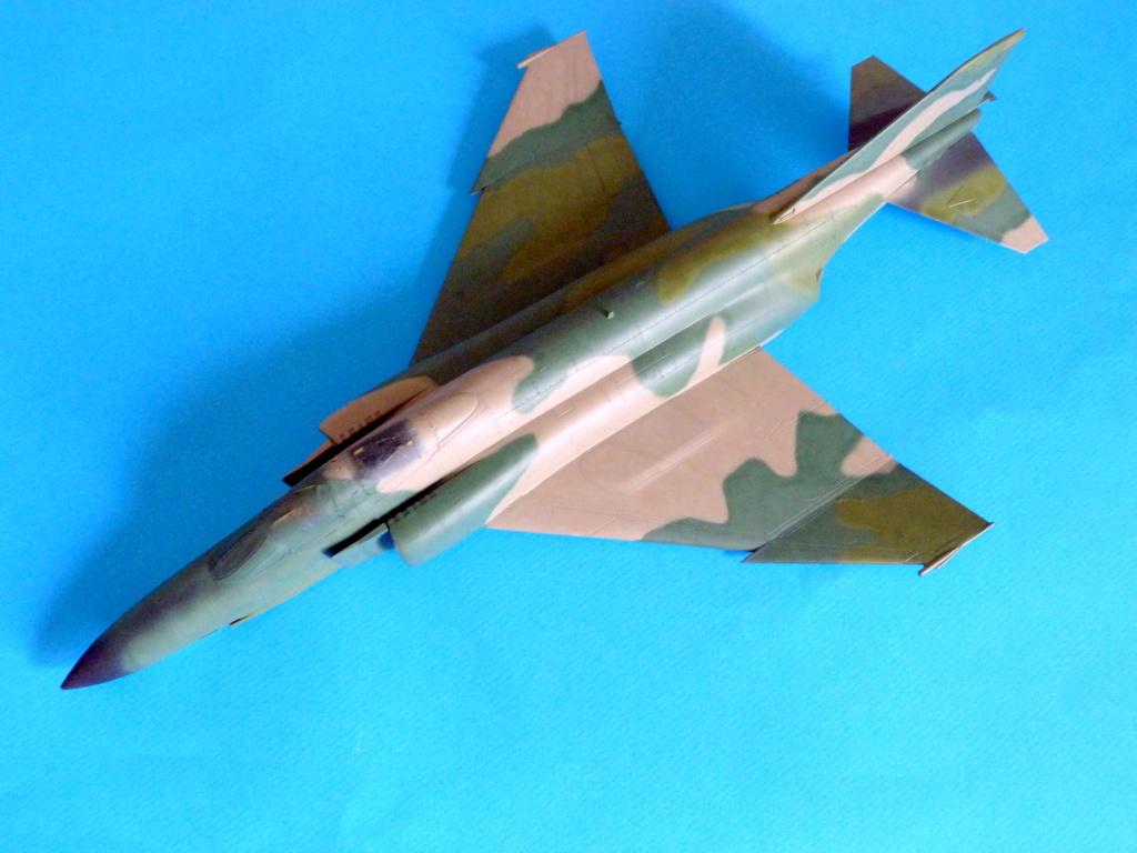 Les ailes japonaises. P1130815