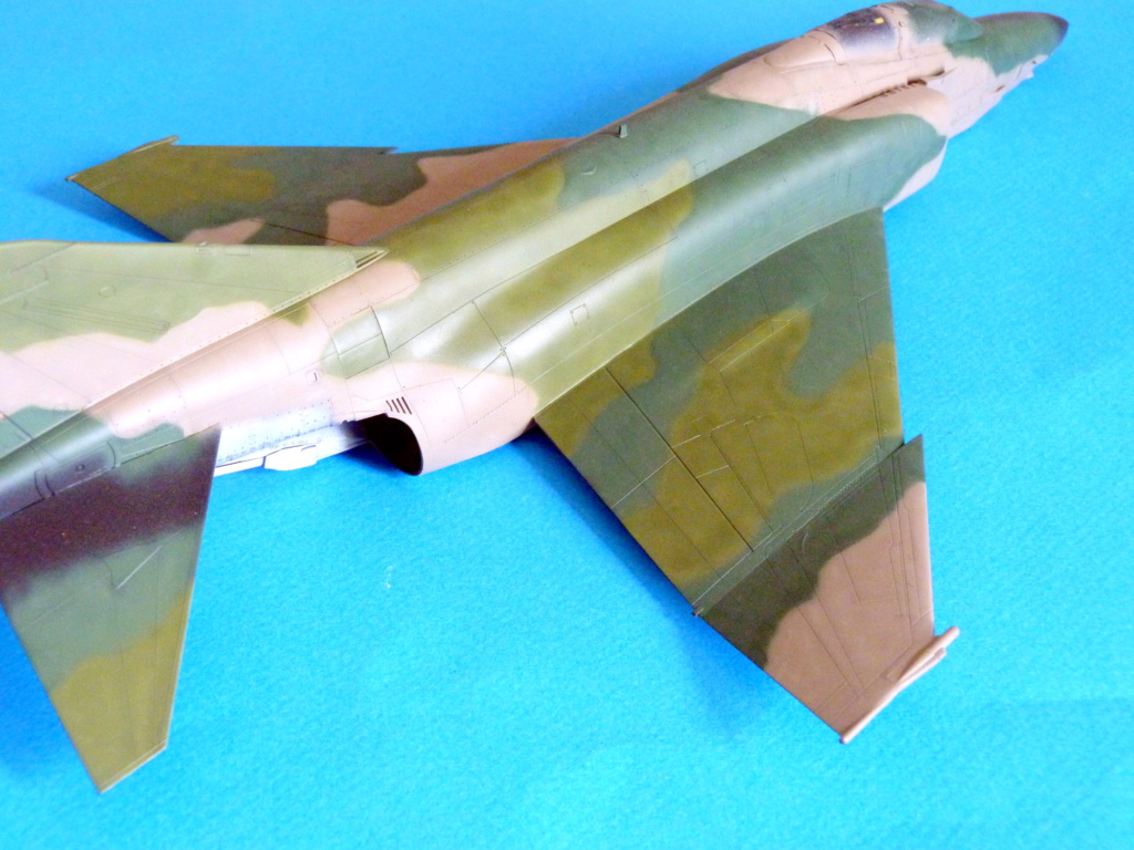 Les ailes japonaises. P1130816