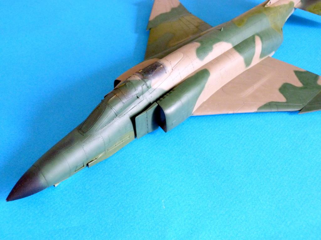 Les ailes japonaises. P1130817