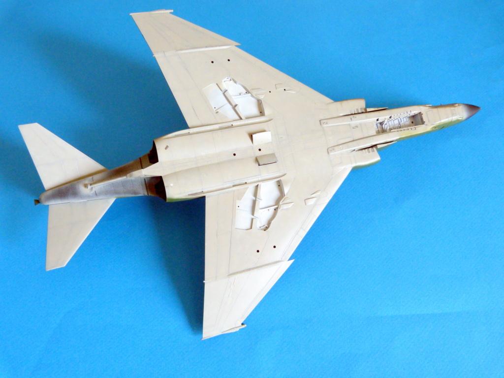 Les ailes japonaises. P1130819