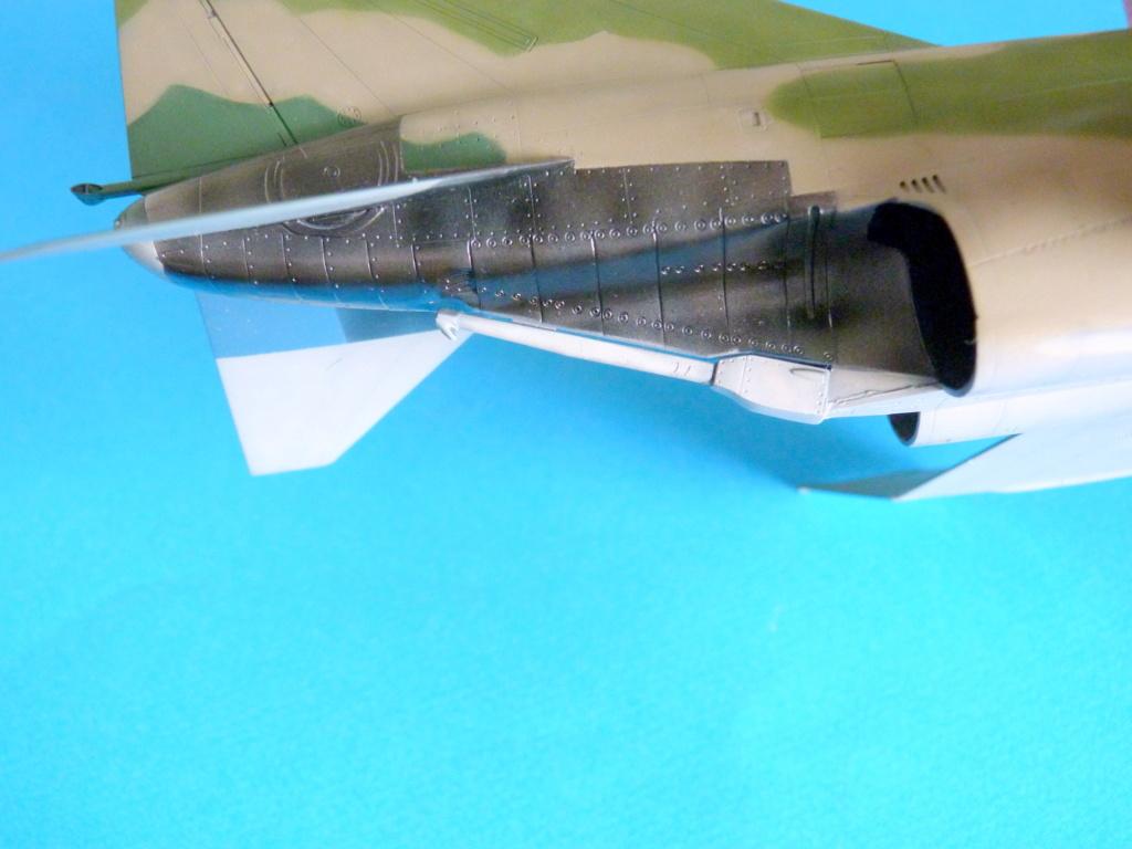 Les ailes japonaises. P1130824