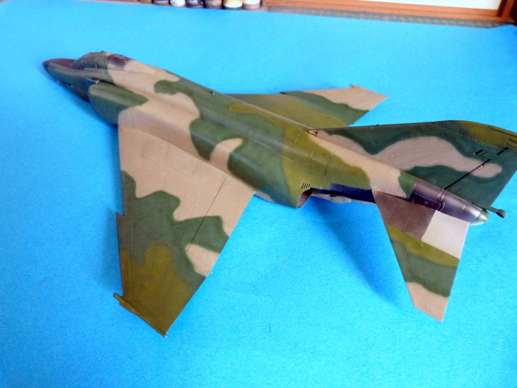 Les ailes japonaises. P1130910