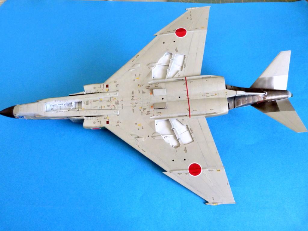 Les ailes japonaises. P1130920