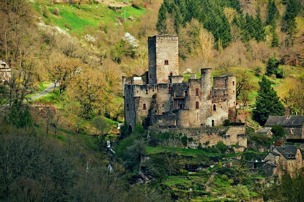 Tributo a mi profe (cinquantenaire ) Castle10