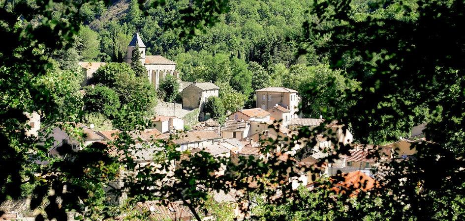 Abbaye de Sylvanés  Histoi11