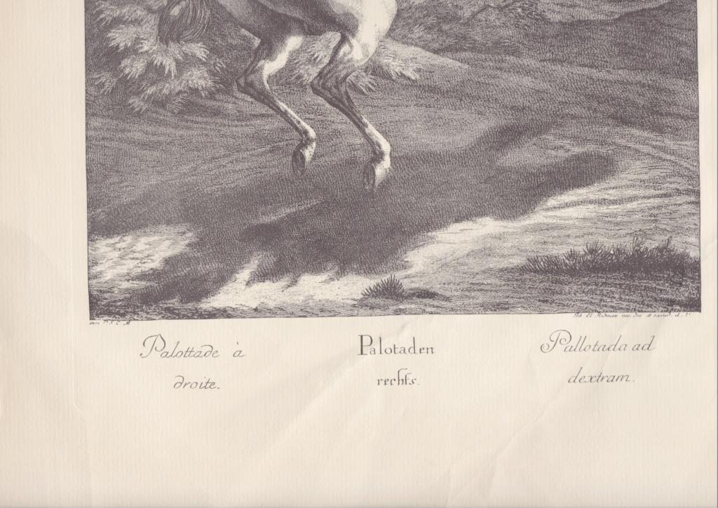 Gravures soldats à cheval Scn_0011