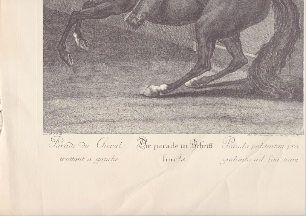 Gravures soldats à cheval Scn_0013