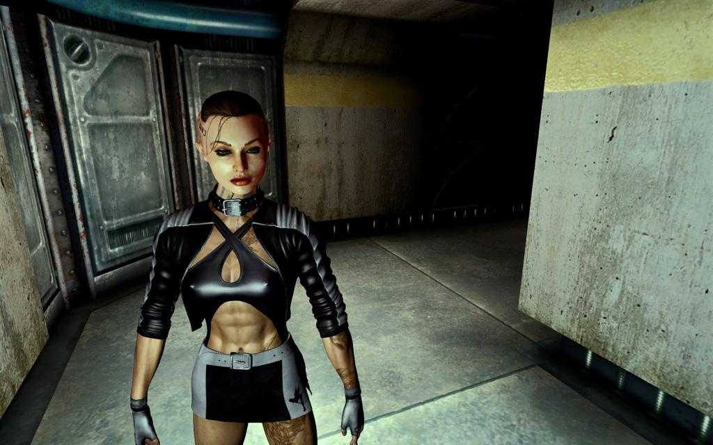 Fallout Screenshots XIII - Page 40 Enb_2029