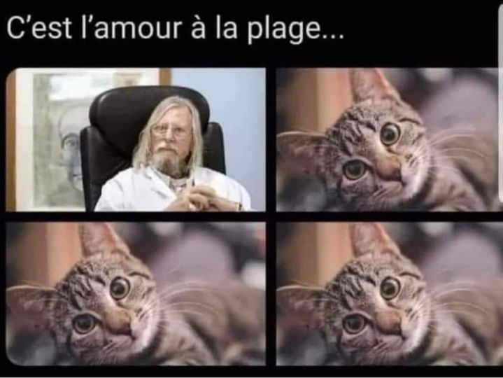 Ici on blague !! - Page 42 Jeude_10