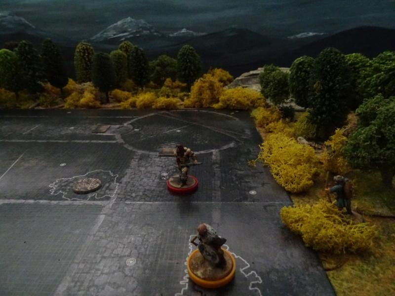 CR Conan : Dans les ruines de Gorgoth Dsc04719