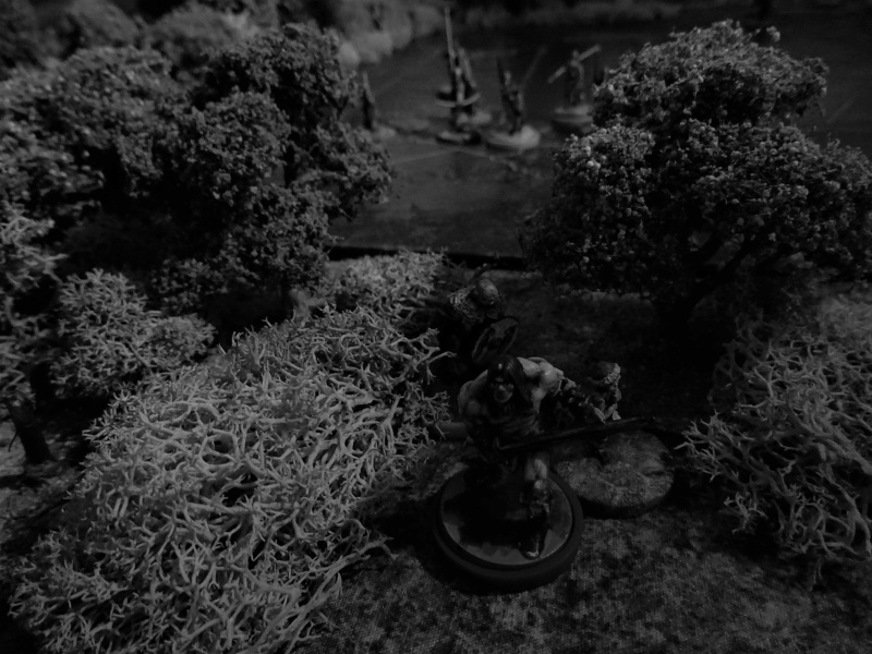CR Conan : Dans les ruines de Gorgoth Dsc04840