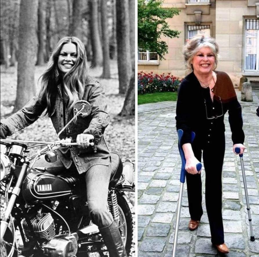 Humour en image du Forum Passion-Harley  ... - Page 38 Capt2079