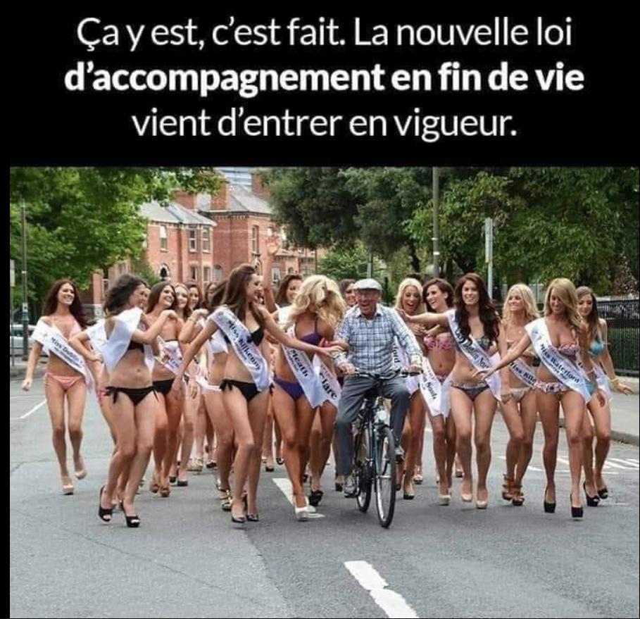 Humour en image du Forum Passion-Harley  ... - Page 38 Capt2653
