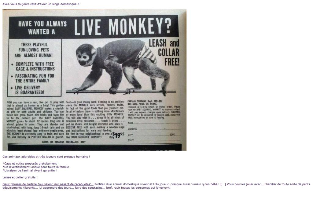 Humour en image du Forum Passion-Harley  ... - Page 39 Capt5752