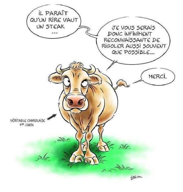 Humour en image du Forum Passion-Harley  ... - Page 3 Captu667