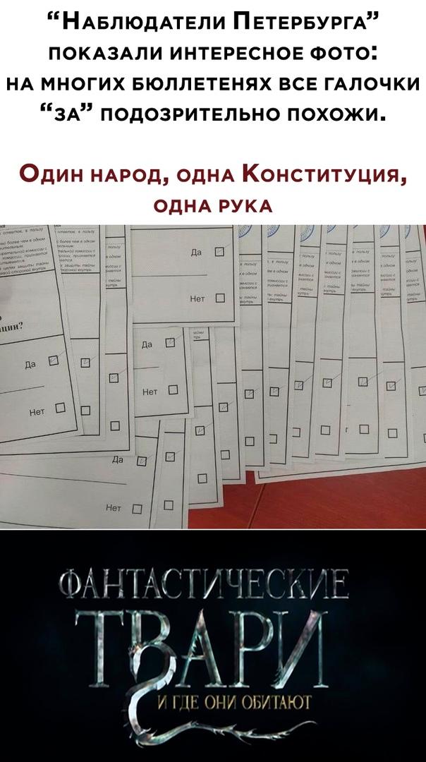 Георгий Сидоров. Голосуем за поправки к Конституции РФ - Страница 2 Iaaaa_13