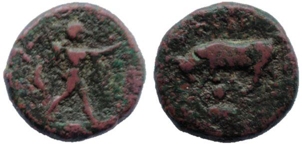 Poseidonia - Lucania, AE13 Lucani10