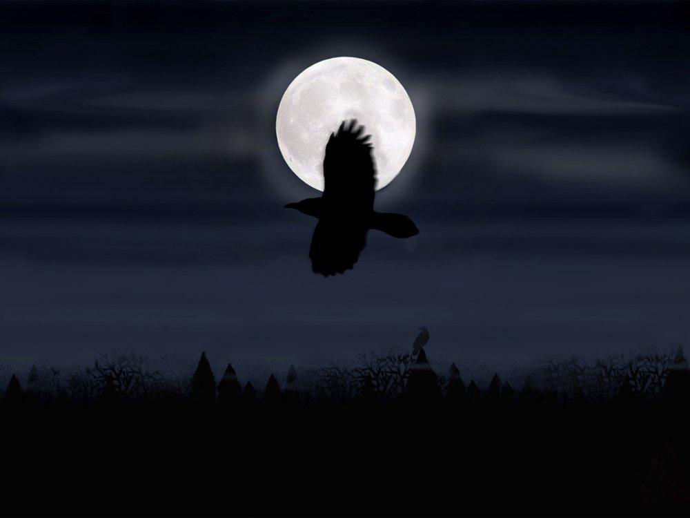 Месяц Цветения, 1254 год. Чёрный ворон, весь я твой... A10