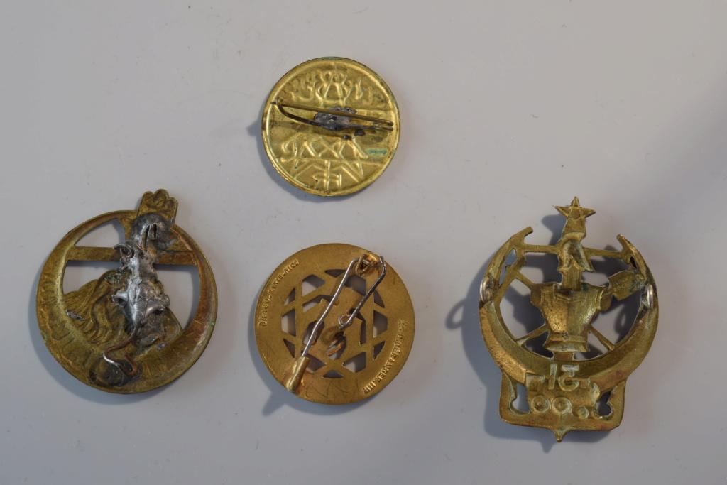 Insignes Afrique du Nord  Dsc_0212