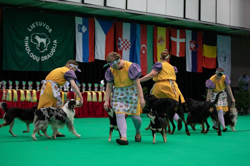 Танцы с собаками - Страница 7 80350510