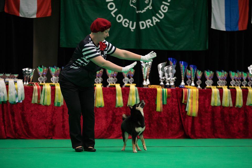 Танцы с собаками - Страница 7 80560910