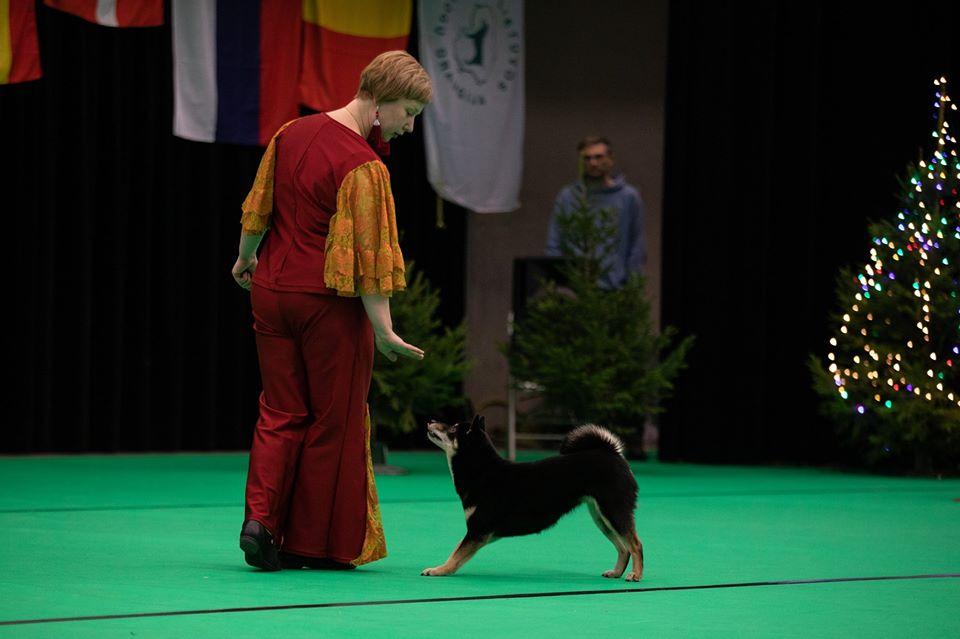 Танцы с собаками - Страница 7 80587110