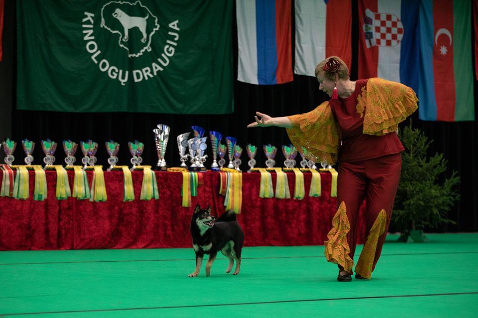Танцы с собаками - Страница 7 80995010