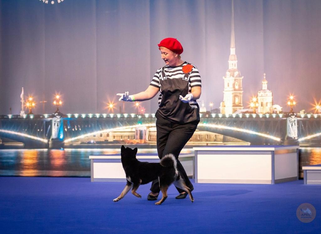 Танцы с собаками - Страница 7 9zh5ka10
