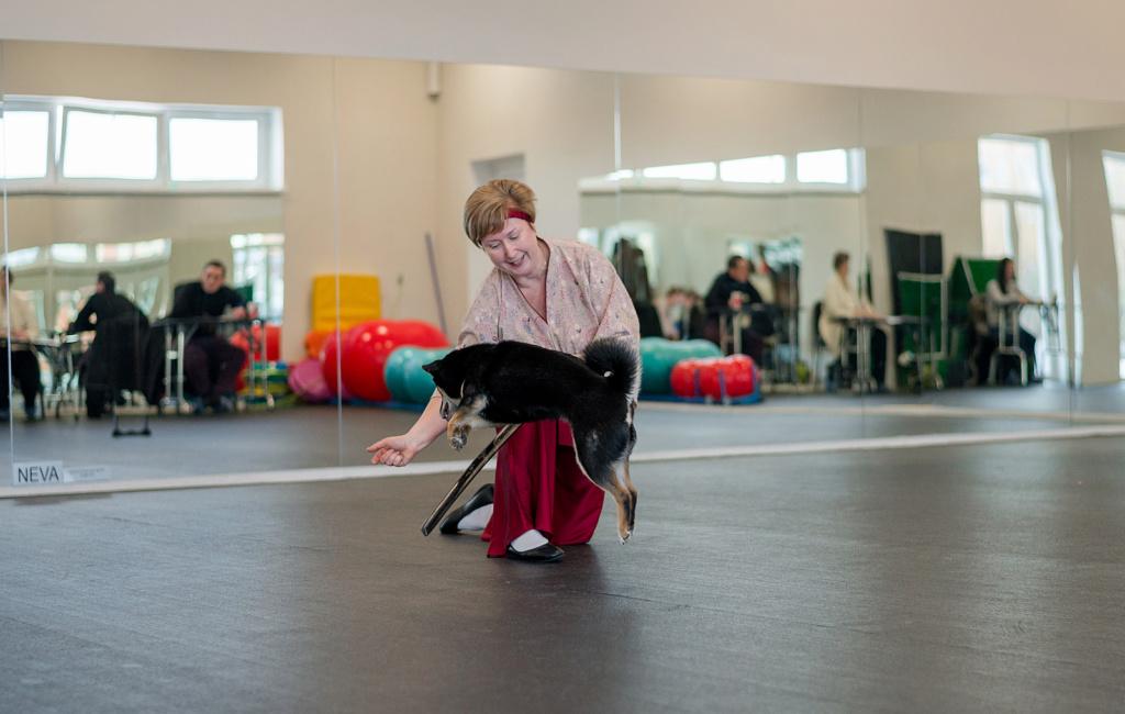 Танцы с собаками - Страница 6 Dsc_1611