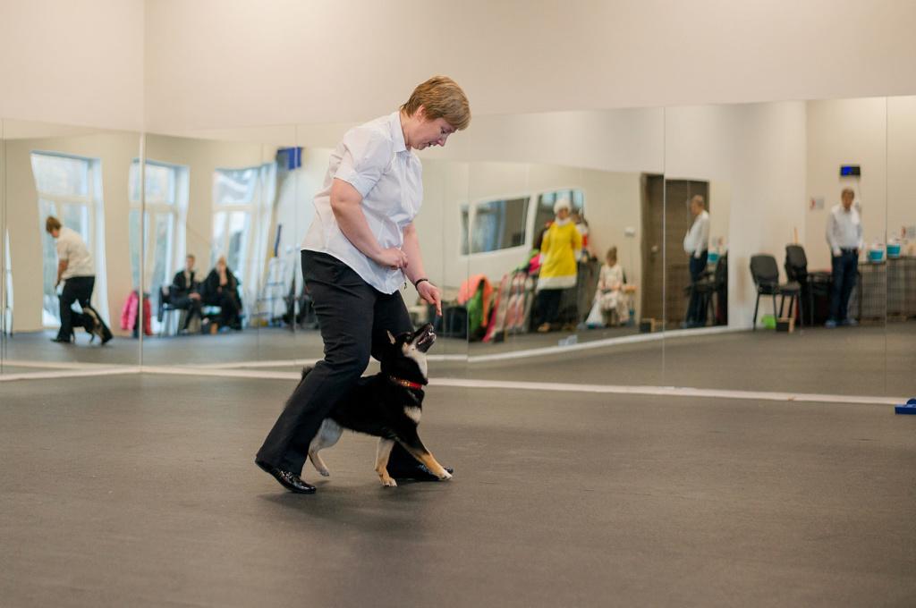 Танцы с собаками - Страница 6 Dsc_2010