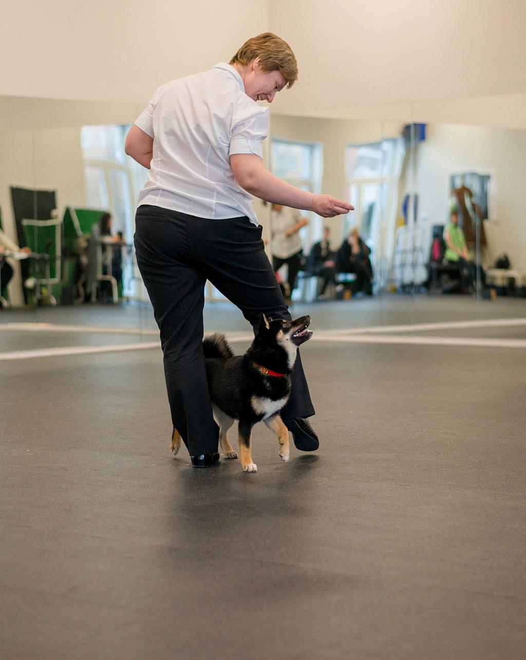 Танцы с собаками - Страница 6 Dsc_2011