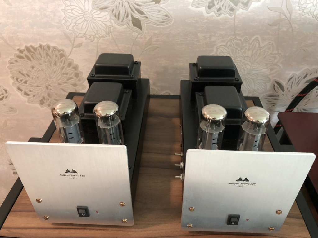 Antique Sound Lab (ASL) AV-25 monoblock amplifier -sold Img_1317