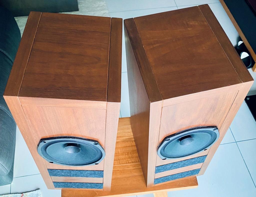 Loth-X Full range speaker with custom cabinet (sold) Img_e810