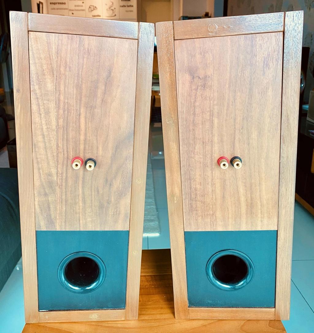 Loth-X Full range speaker with custom cabinet (sold) Img_e811