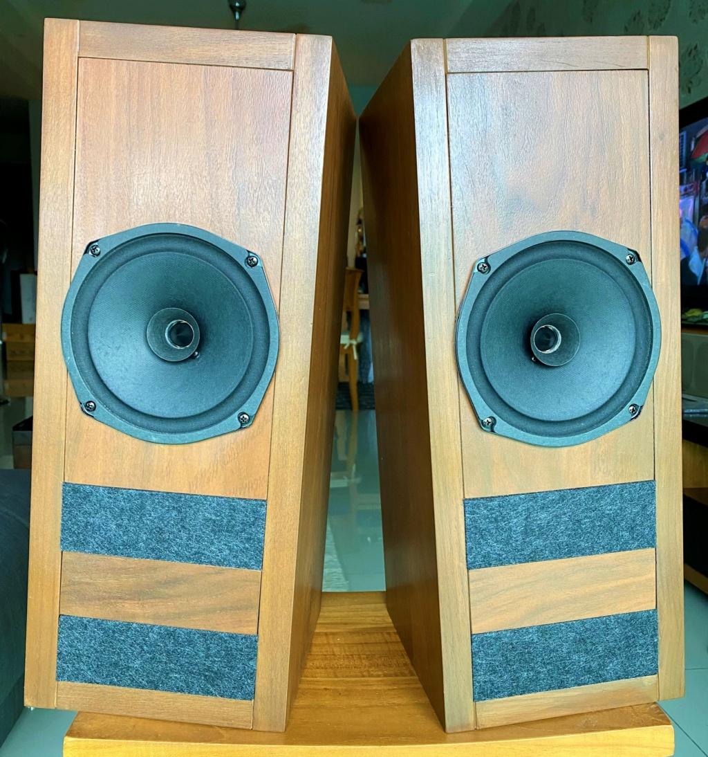 Loth-X Full range speaker with custom cabinet (sold) Img_e812