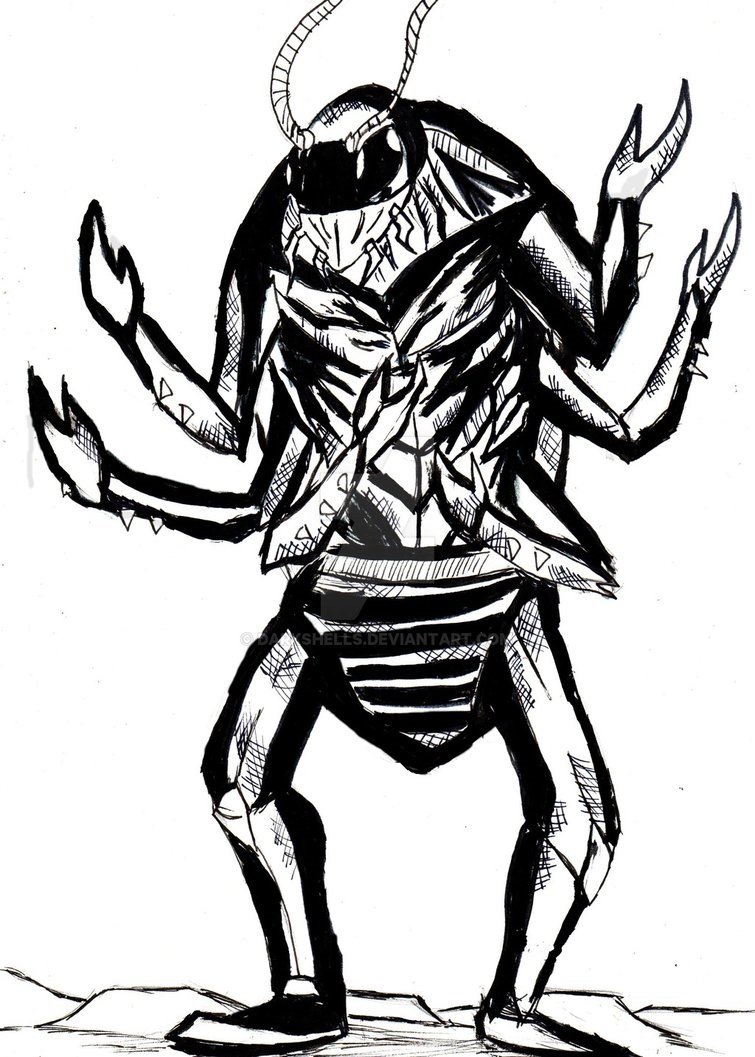 Alfonso, la cucaracha. El_hom10