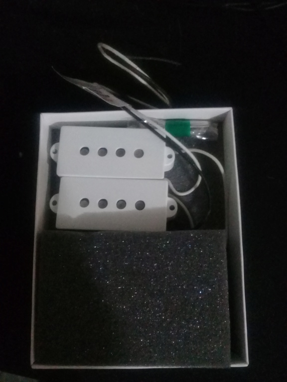 Montando um precision bass 20181110