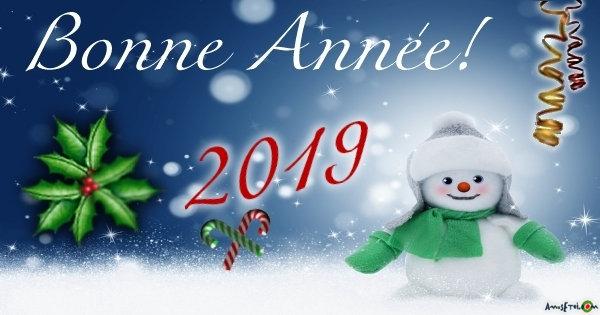 BONNE ANNÉE 2019 Fb_02-10