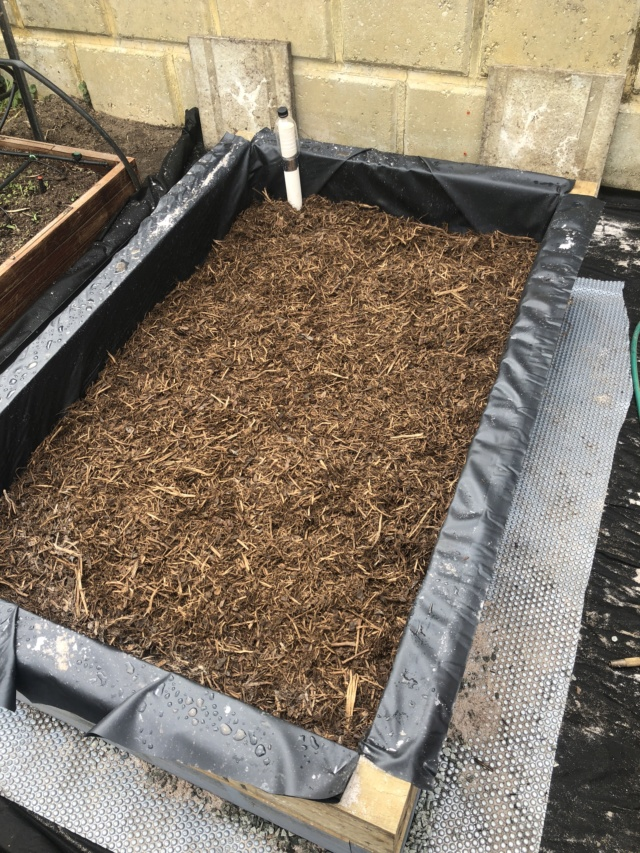 My first of many wicking bed SFG or Square Meter Garden pictures Kims_w18