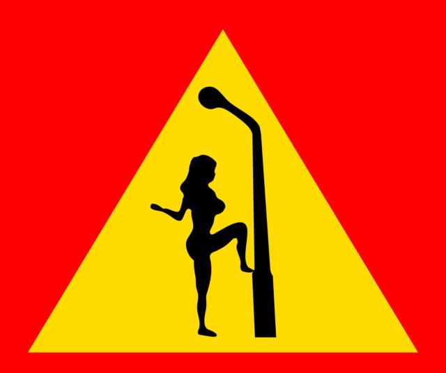 La prostitution étend son réseau sur Internet (Le Parisien) Sign-211