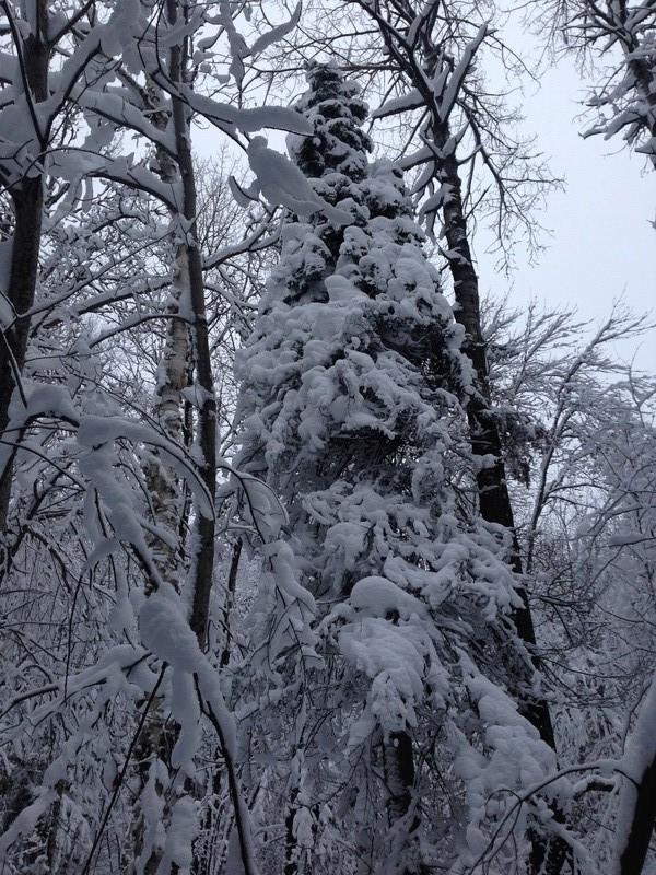 Vive l'hiver Remont10